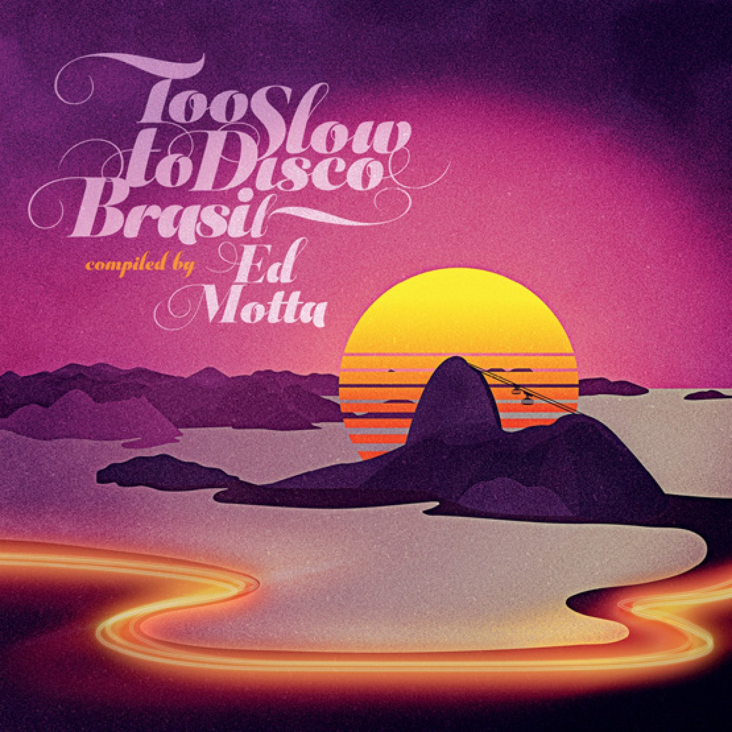 045_Various Artists	Ed Motta Presents Too Slow To Disco Brasil