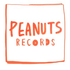 PEANUTS RECORDS