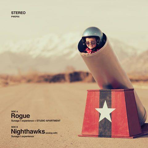 043_Rogue / Nighthawks