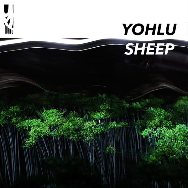 08-055 YOHLU SHEEP(7inch edit)/&I